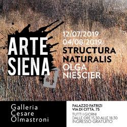 Olga Nescier, Structura Naturalis. A Siena, Galleria Olmastroni, dal 12 luglio al 4 agosto 2019