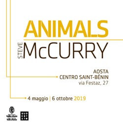 Steve McCurry - Animals. Ad Aosta, Centro Saint-Bénin, dal 3 maggio al 6 ottobre 2019