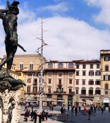 Firenze, installato in piazza della Signoria l'Abete di Penone, un omaggio a Dante