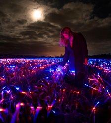 Una danza di luci su campo coltivato: l'installazione di Roosegaarde che fa crescere le piante