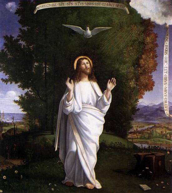 Trasfigurazione di Andrea Previtali
