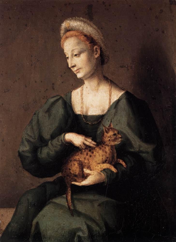 Dama con gatto di Bacchiacca