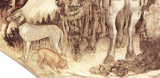 Alcuni animali nell'affresco del san Giorgio