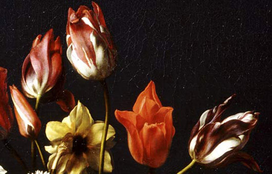 Carlo Dolci, Particolare con tulipani e narciso
