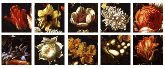 Tutti i fiori presenti nel dipinto