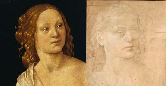 Il volto a confronto con il disegno di Vienna, Albertina