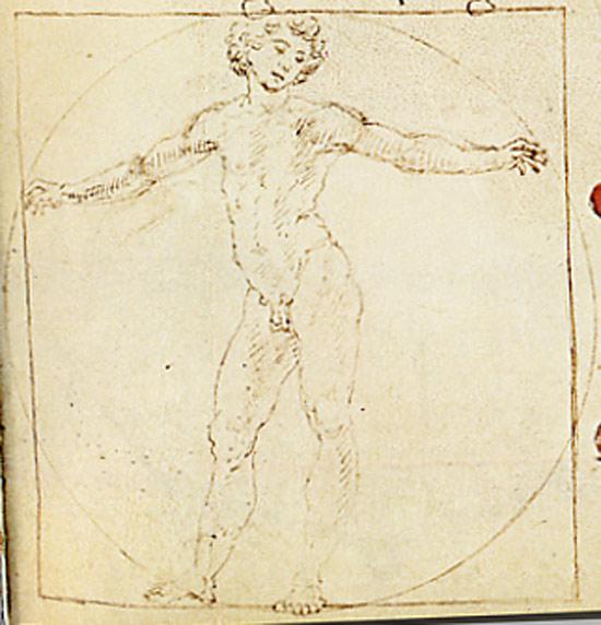Francesco di Giorgio Martini, Uomo vitruviano