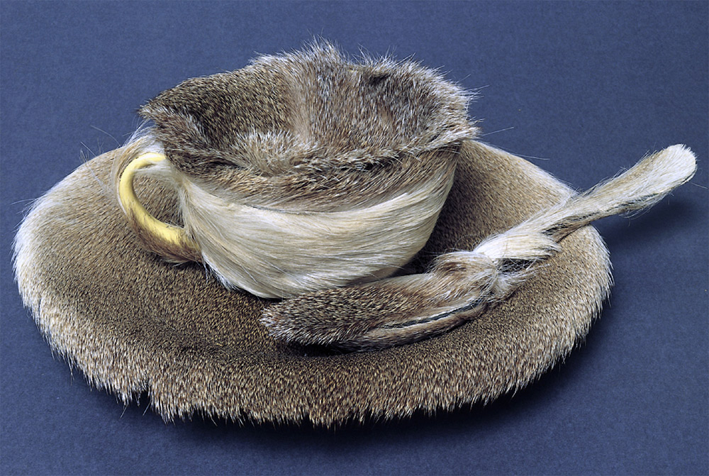 Meret Oppenheim, Oggetto