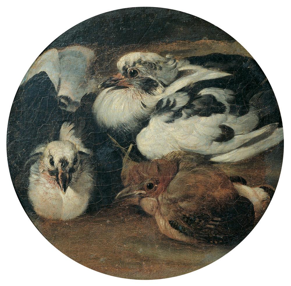 Sinibaldo Scorza, Due piccioni e un tordo