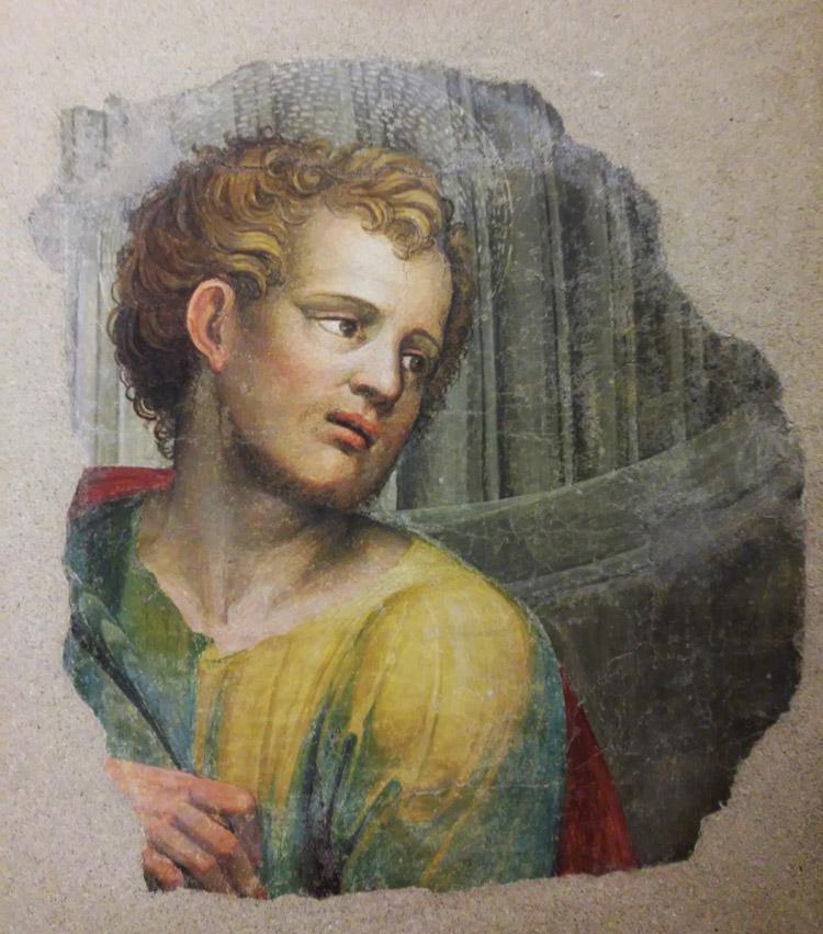 Bartolomeo Neroni detto il Riccio, frammenti degli affreschi per la Cattedrale di Siena, dettaglio