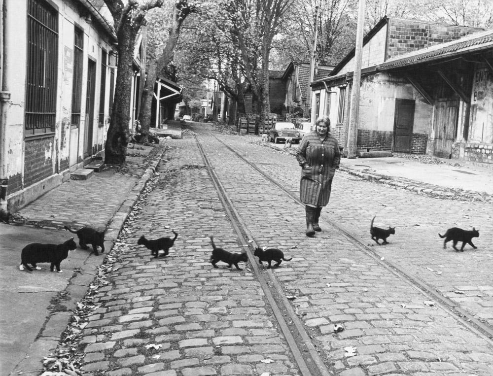 Robert Doisneau, Les chats de Bercy