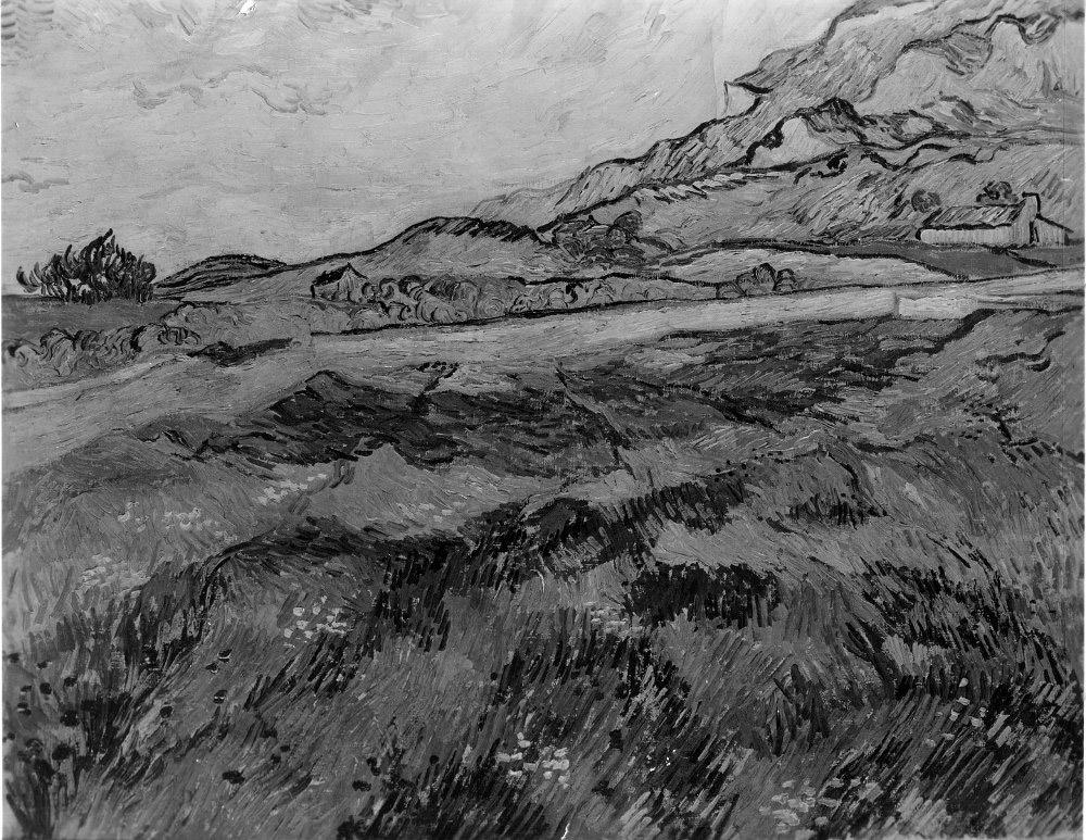 Vincent van Gogh, Paysage à Saint-Remy