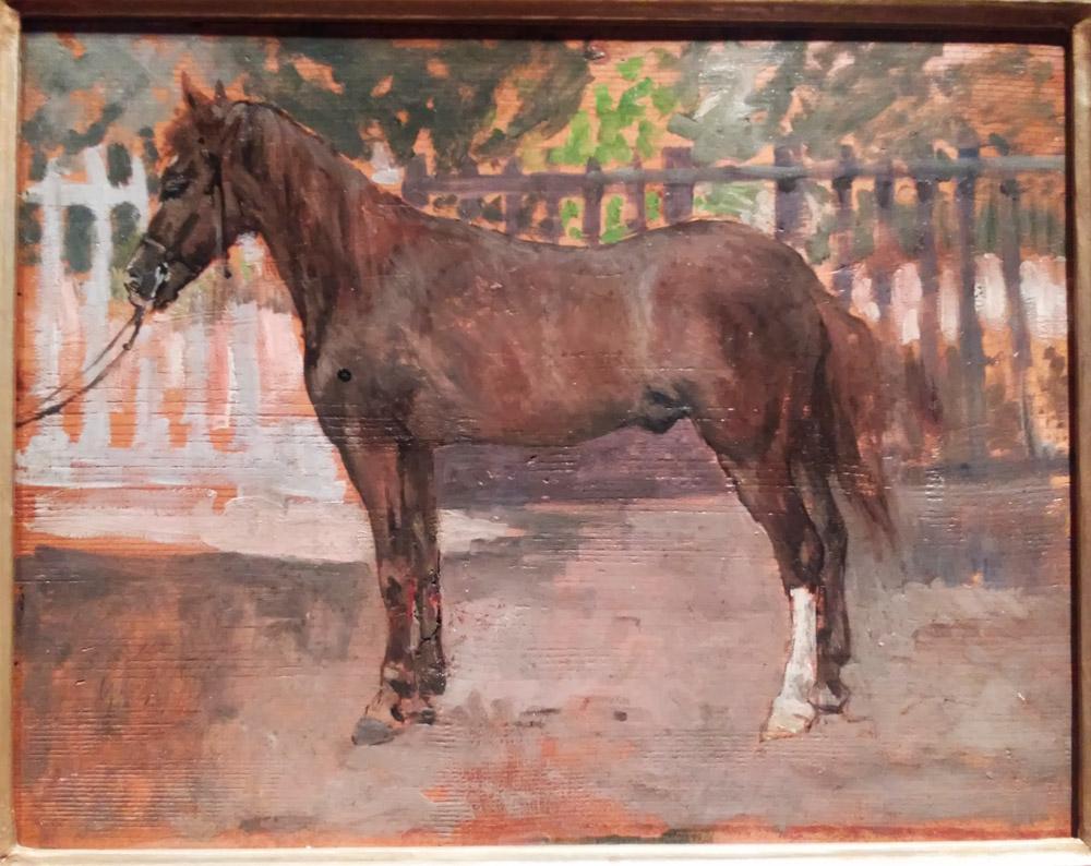 Giovanni Fattori, Studio di cavallo
