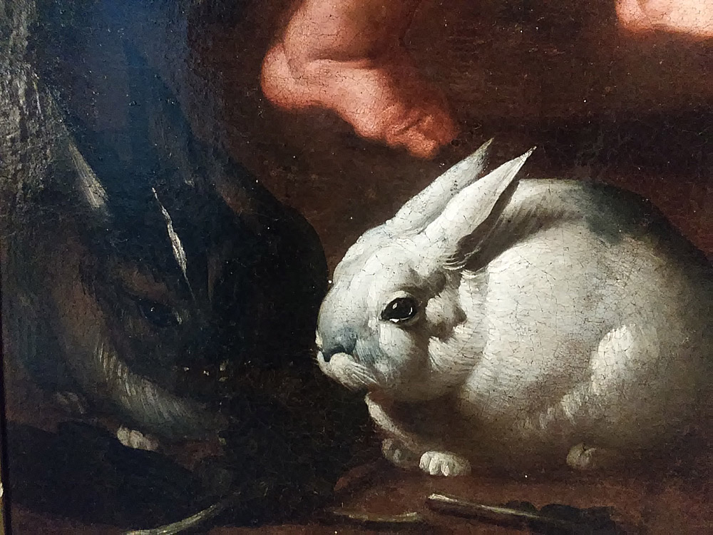 I conigli della Sacra Famiglia