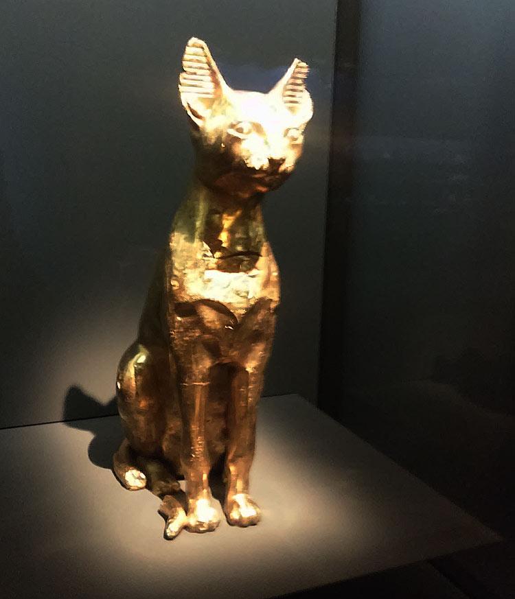 Damien Hirst, Cat
