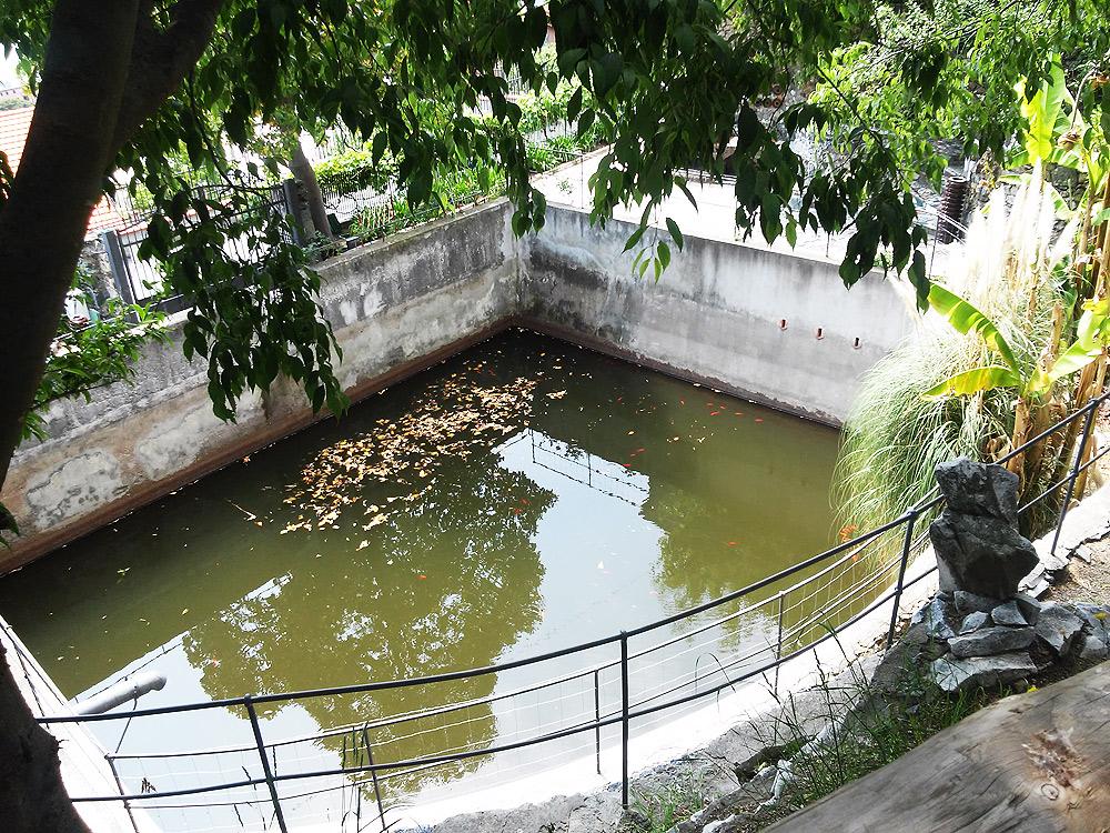 La vasca del giardino