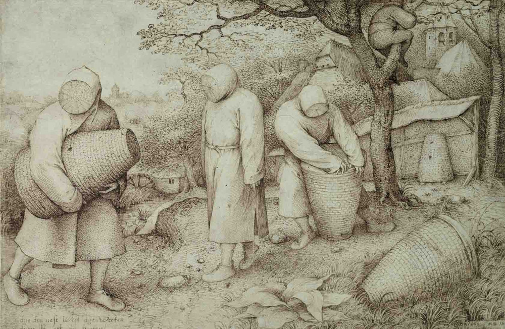 Pieter Bruegel il Vecchio, Apicoltori
