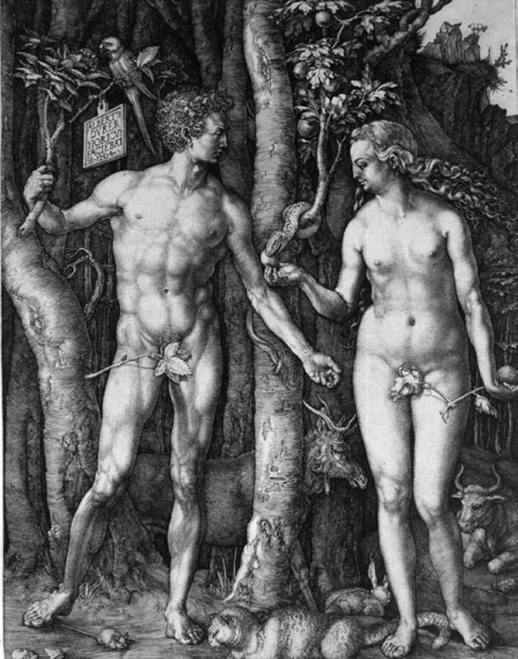 Albrecht Dürer, Adamo ed Eva
