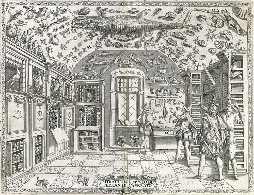 Vista del Museo di Ferrante Imperato a Napoli