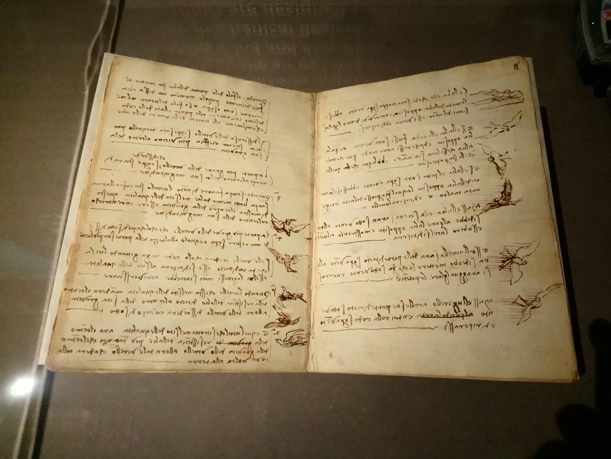 Leonardo da Vinci, Codice sul volo degli uccelli, fogli 7v-8r (1505-1506; manoscritto su carta; Torino, Biblioteca Reale)