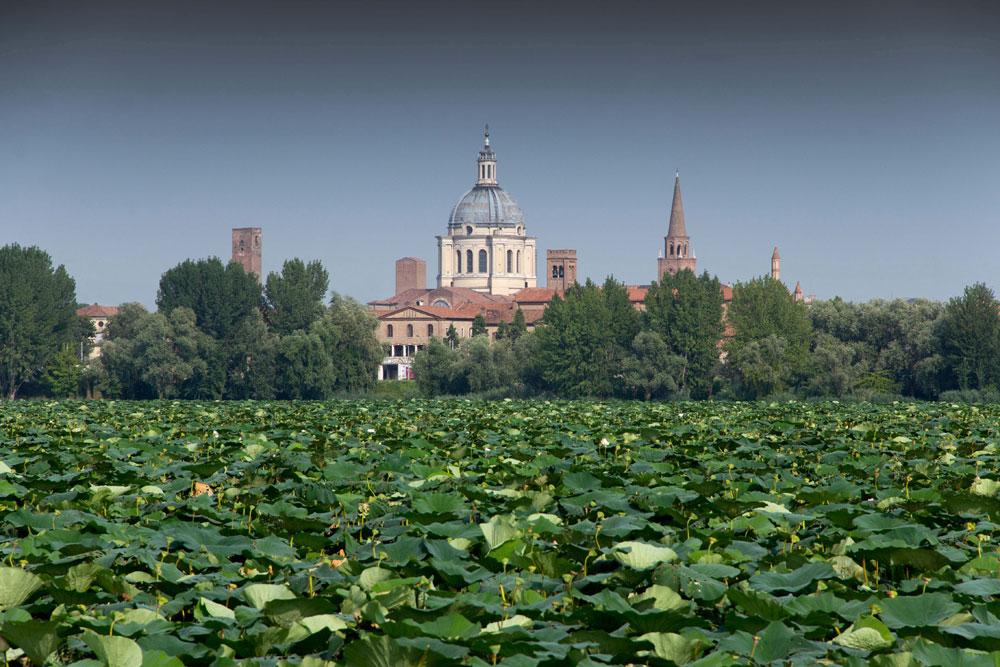 Mantova ospita il primo Forum Mondiale sulle Foreste Urbane
