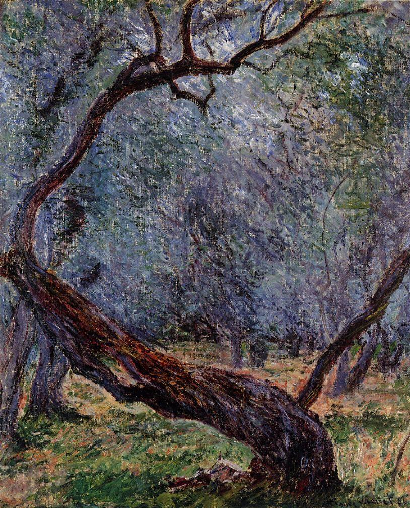 Claude Monet, Studio di piante di olivo (1884; olio su tela, 73 x 60 cm; Collezione privata)