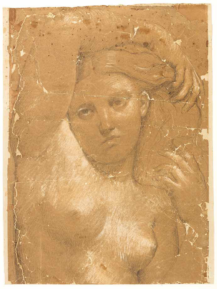 Jean-Auguste-Dominique Ingres, Studio per la Venere Anadiomene (1808 circa; matita e biacca su carta vegetale, 47 x 24 cm; Montauban, Musée Ingres)