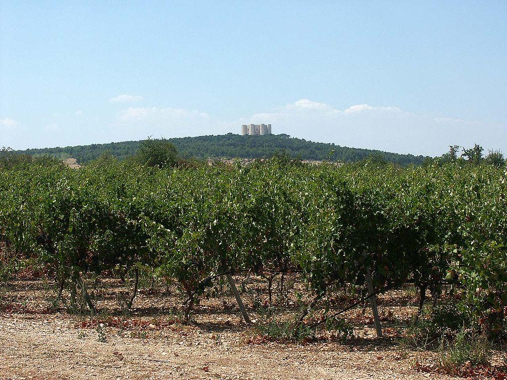 Castel del Monte da lontano sulla sommità del colle