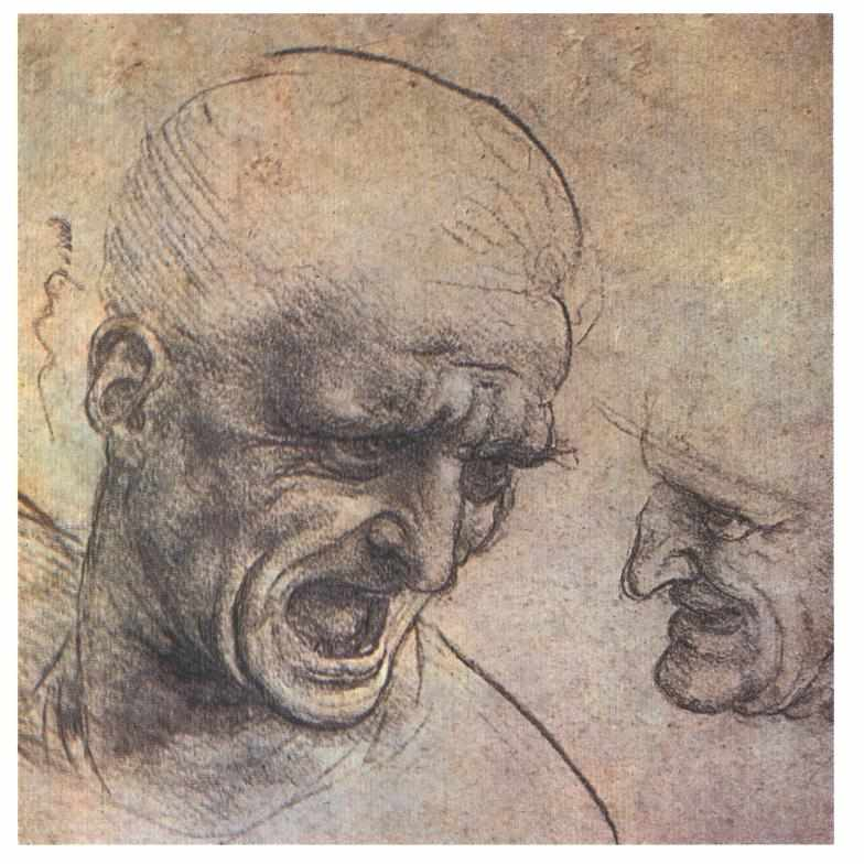 Leonardo da Vinci, Studî per la testa di Niccolò Piccinino, studio per la Battaglia di Anghiari (1503 circa; gessetto rosso e nero su carta rosa, 191 x 188 mm; Budapest, Szépművészeti Múzeum)
