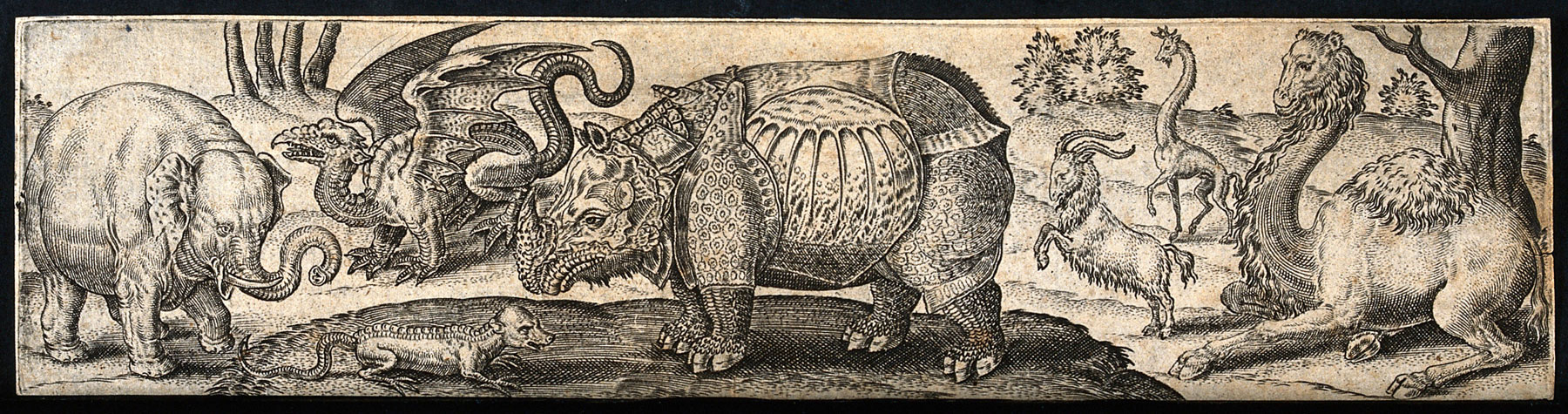 Abraham de Bruyn, Un elefante, un drago, un rettile, un rinoceronte, una capra e due giraffe (seconda metà del XV secolo; incisione, 52 x 21 mm; Londra, Wellcome Collection)