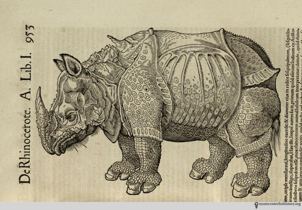 Il rinoceronte illustrato nella Historia animalium di Conrad Gessner (pubblicata nel 1551-1558)