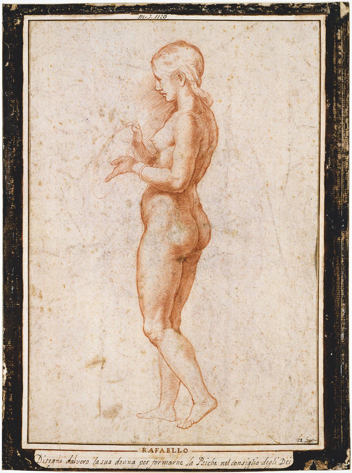 Bottega di Raffaello, Giovane figura femminile di profilo, verso (1517 circa?; sanguigna, 362 x 256 mm; Parigi, Musée du Louvre, Cabinet des dessins)