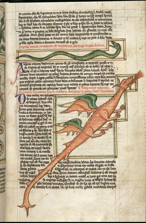 Miniatore del XIII secolo, Drago in un bestiario medievale (1255-1265 circa; Londra, British Library, Harley MS 3244, fol. 59r.)