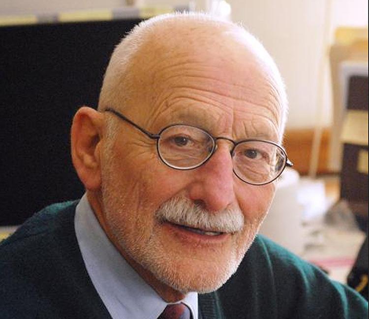 Addio a Irving Lavin, storico dell'arte, grande esperto del Barocco italiano