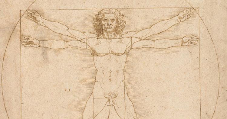 L'Uomo vitruviano di Leonardo da Vinci è tornato in Italia. Si studia la possibilità di esporlo ogni anno