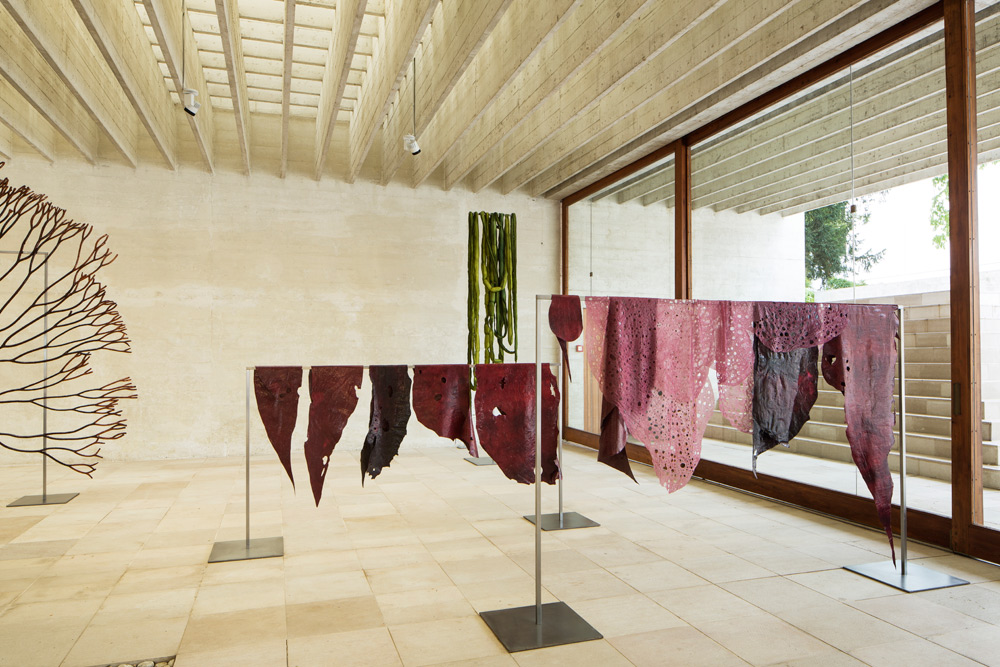 Il Padiglione dei Paesi Nordici alla 58ma Biennale di Venezia