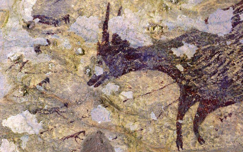Arte rupestre, forse è stata scoperta la più antica scena di caccia al mondo