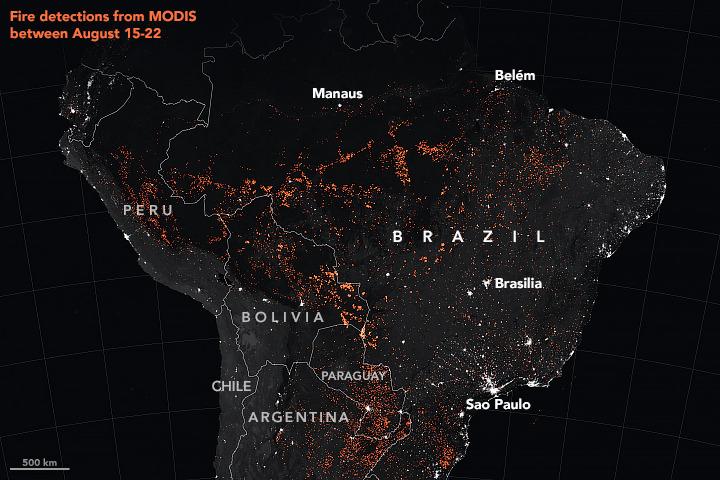 """Lo storico dell'arte brasiliano: """"in Amazzonia catastrofe ecologica: rinuncio al convegno mondiale di Firenze"""""""