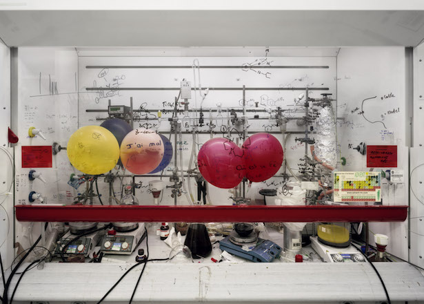"""Thomas Struth protagonista alla Fondazione MAST con la mostra """"Nature & Politics"""""""