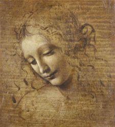 """La """"Scapiliata"""" di Leonardo da Vinci: fortuna, studi e nuove ipotesi in mostra a Parma"""