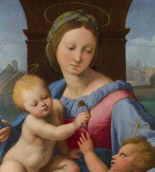 Raffaello e gli amici di Urbino: una mostra sugli intrecci artistici nelle Marche d'inizio Cinquecento