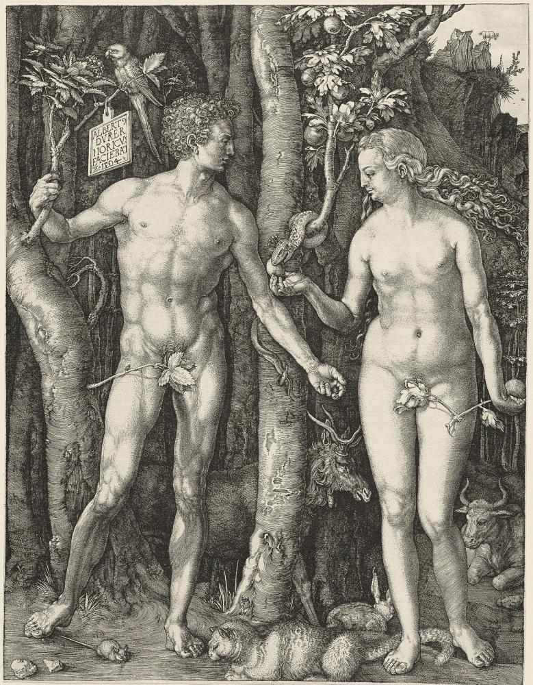 """Albrecht Dürer, Adamo ed Eva (Il Peccato originale) (1504; bulino, 249 x 191 mm, esemplare privo di margini; esemplare di III stato su tre, con caratteristiche simili alle varianti A, B o F secondo Meder; iscrizioni: nel cartiglio, in alto a sinistra """"ALBERT / DVRER / NORICVS / FACIEBAT / [Monogramma AD] 1504""""; filigrana: testa di bue sormontata da una freccia - M. 62; Collezione privata, Brescia)"""