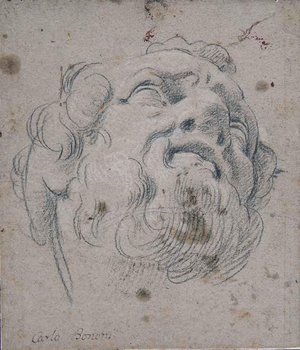 Carlo Bononi, Testa maschile (1616-1617; pietra nera, gessetto bianco, carta marrone, controfondato, 236 x 205 mm; Milano, Pinacoteca di Brera, Gabinetto Disegni e Stampe, Inv. 173)