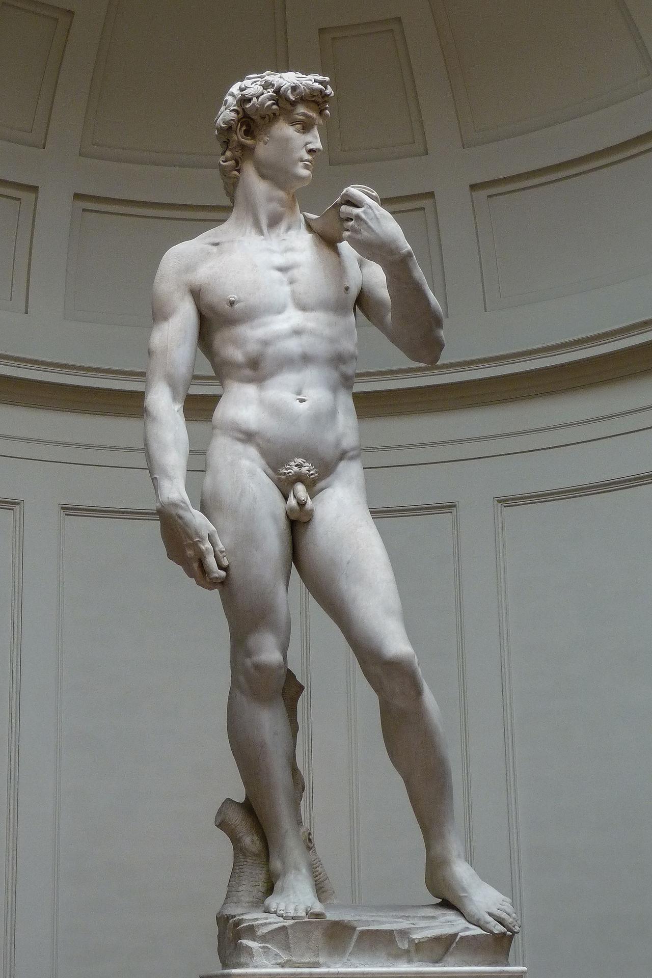 Michelangelo Buonarroti, David (1501-1504; marmo, 516 x 199 cm; Firenze, Galleria dell'Accademia)