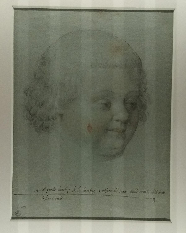 Jacopo Ligozzi, Volto di Simonino da Trento (Firenze, Uffizi, Gabinetto dei Disegni e delle Stampe)