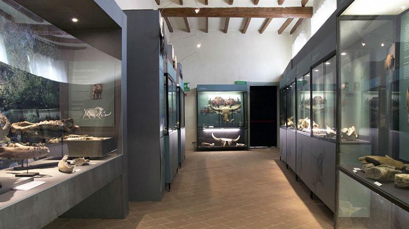 Il Museo Geologico Cortesi