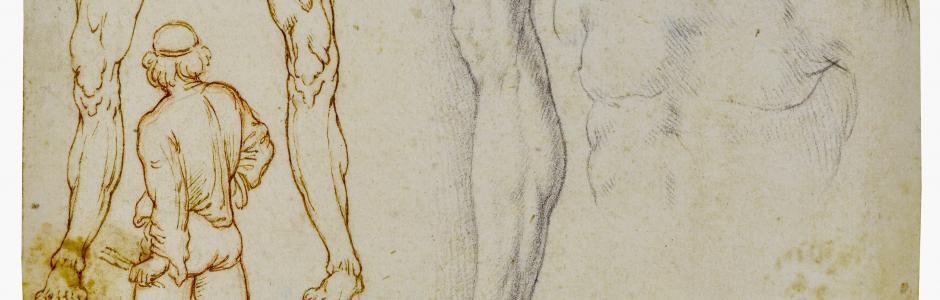 Milano, un inedito studio per un Salvator Mundi di Leonardo è in mostra al Castello Sforzesco