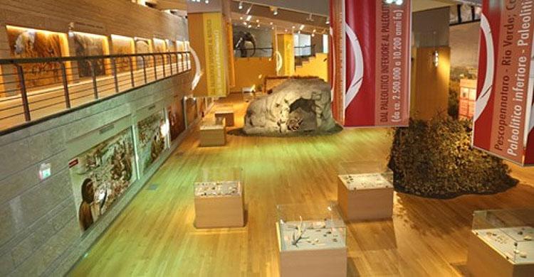 A Isernia esposto il reperto umano più antico d'Italia: il dentino di un bambino di 600mila anni fa