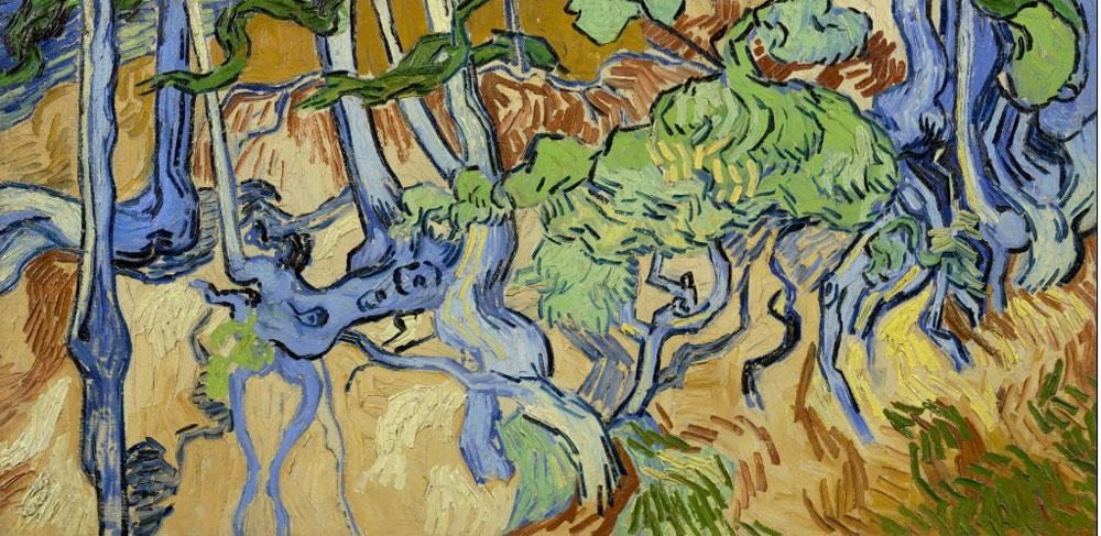 Ecco dove Van Gogh dipinse il suo ultimo quadro prima di morire