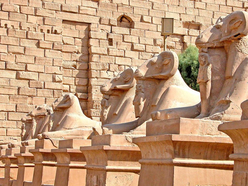 Egitto, quattro sfingi da Luxor spostate in mezzo a una rotatoria al Cairo. Gli archeologi sono schifati